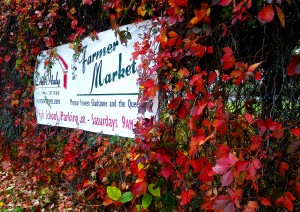 Little Italy's Fall Farmers' Market takes place on the weekends during the fall.