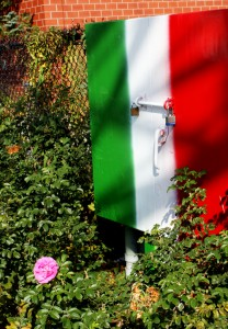 The celebrations of Italian culture in Little Italy are must-see events!