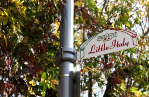 Little Italy's Flavours, Flowers, and Festivals