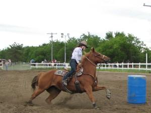 Capital Fair Horse Show